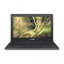 Portátil ASUS Chromebook C204MA-GJ0012