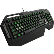 ThunderX3 TK30 teclado USB Negro